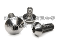 Titanium Button Head Bolt