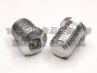 Titanium Brake Boss Plug