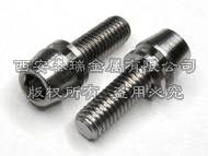 Titanium Bolt With Washer